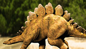 Stegosaurus Prints - Stegosaurus Dinosaur Print by Christian Darkin