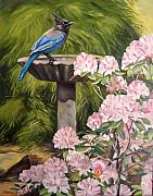 Garden Scene Paintings - Steller jay by Norman Kelly