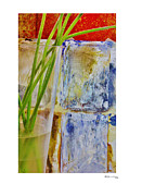 Xoanxo Digital Art Posters - Stems on Abstract 1 Poster by Xoanxo Cespon