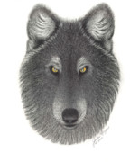 Animal Paw Print Posters - Stepinwolf Poster by Jackie Meyers