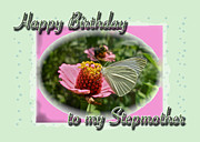 Stepmother Posters - Stepmother Birthday Greeting Card - Butterfly on Flower Poster by Mother Nature