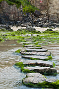 Stepping Stones Prints - Stepping Stones Print by Paul Howarth