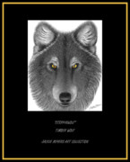 Timber Drawings Posters - Steppinwolf Poster by Jackie Meyers