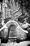 Philadelphia Digital Art Metal Prints - Steps Along the Wissahickon Metal Print by Bill Cannon