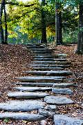 Lana Trussell Posters - Steps Of Fall Poster by Lana Trussell