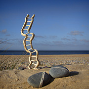 Pictur Metal Prints - Steps to Heaven Metal Print by Martin  Fry