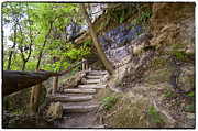 Hamilton Pool Photos - Steps To The Cave by Lisa  Spencer