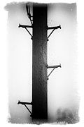 Metal Pole Photos - Steps To The Sky by David Ridley