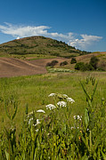 Wheatfields Photo Prints - Steptoe Butte Print by Reflective Moments  Photography and Digital Art Images