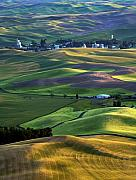 Palouse Prints - Steptoe Shadows Print by Mike  Dawson
