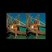Michelle Prints - Stereoscopic Driftwood Beach Bikini Girl Audrey Michelle 011 Print by Rolf Bertram