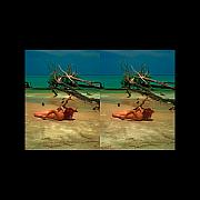 Michelle Prints - Stereoscopic Driftwood Beach Bikini Girl Audrey Michelle 017 Print by Rolf Bertram