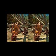 Audrey Photo Posters - Stereoscopic Driftwood Beach Bikini Girl Audrey Michelle 020 Poster by Rolf Bertram