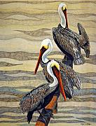 Pelican Drawings Metal Prints - Steves Fishing Buddies Metal Print by Suzanne McKee