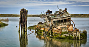 Old Shipwreck Photos - Still Afloat by Heather Applegate