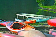 Canoes Originals - Still Life by Debbie Sikes