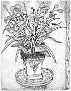 Pointillism Drawings - Still Life by Glenn McCarthy Art and Photography