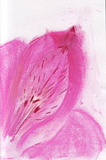 July Pastels - Still Life Study - pink flower by Rebecca Lilley