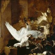 Baptist Paintings - Still life with a dead swan by Jan Weenix