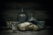 Tobacco Photos - Still Life With Bear Skull by Priska Wettstein