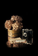 Postcards Art - Still Life with Hydrangea and Camera by Jill Battaglia