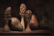 Wood Carving Framed Prints - Still Life with Mushrooms and Pears II Framed Print by Tom Mc Nemar