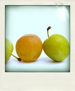 Fruit Still Life Framed Prints - Still life with plums. Framed Print by Bernard Jaubert