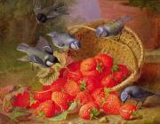 Feathers Painting Prints - Still Life with Strawberries and Bluetits Print by Eloise Harriet Stannard
