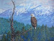 Eagles Drawings - Still Morning Watch by Rebecca Steelman
