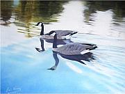 Canadian Geese Pastels - Still Motion by David Vincenzi