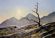 Pacific Crest Trail Paintings - Still Standing by Frank Wilson