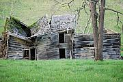 Pendleton County Photos - Still Standing by Randy Bodkins