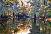 Bayou Prints - Still Waters - Autumn Reflections Print by Lana Trussell