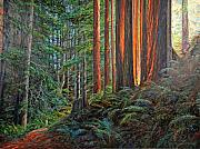 Ferns Paintings - Stillwater Cove Canyon Trail by Gary Symington
