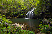 North Fork Prints - Stinging Fork Falls - D005706 Print by Daniel Dempster