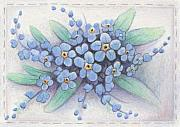 Blue Flowers Drawings - Stitched Forget-Me-Nots by Amy S Turner