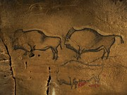Palaeolithic Prints - Stone-age Cave Paintings, Asturias, Spain Print by Javier Truebamsf