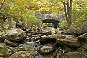 Gatlinburg Tennessee Framed Prints - Stone Bridge 6063 Framed Print by Michael Peychich