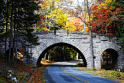 Carriage Road Photos - Stone Bridge in Acadia by George Oze