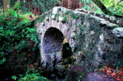 Verdant Prints - Stone Bridge Print by Thomas R Fletcher