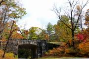 Stone Bridge Photos - Stone Bridge by Todd Hostetter
