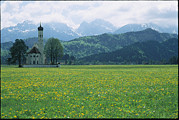 Spring Views Posters - Stone Chapel In Neuschwanstein Valley Poster by Norbert Rosing