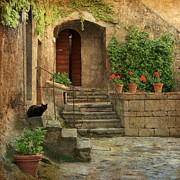 Daniel Sands - Stone Garden
