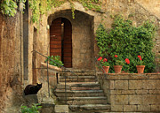 Daniel Sands - Stone Garden Landscape