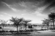 Blackwhite Prints - Stone Hut Set In Grassland Plains Print by David DuChemin