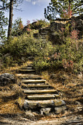 Stone Path Photos - Stone Steps by Heather Applegate