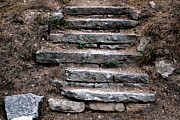 Stepping Stones Posters - Stone Steps Poster by Theresa Willingham