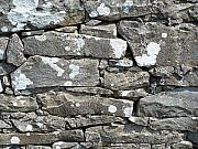 Crevice Prints - Stone Wall Detail Doolin Ireland Print by Teresa Mucha