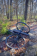 Tennessee Historic Site Prints - Stones River Battlefield Print by Luc Novovitch