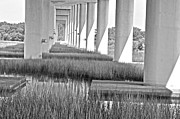 Donnie Smith - Stono Bridge